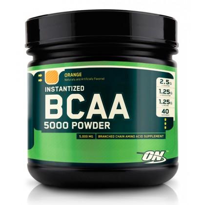 BCAA 5000 Powder (380 г) - ON