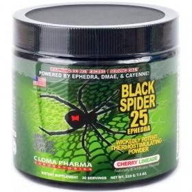 Black Spider Powder (210 г, 30 порций)